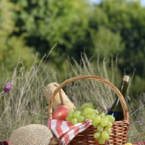 Picnic basket with hat and book. Holiday vacation concept